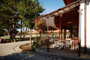 Meubles de jardin en fer forgé - terrasse - pavillon de jardin - tonnelle